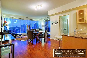 Apartments - Flats - Houses to Rent - Montreal - bd saint laurent.  Photo 7